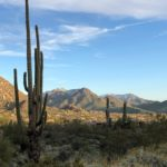Scottsdale for the Luxury Traveler